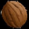 walnut's Photo